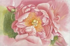Charmaine Phillips - bloom