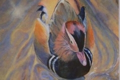 Jan Harrington-Johnson_Painted Duck