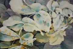 Cuttings-from-the-Garden_watercolour_56x76cm_Winner-Overall-Goulburn-Show_Marion-Chapman_web