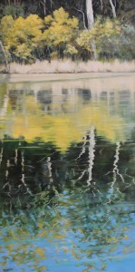 Berarra Lagoon NSW